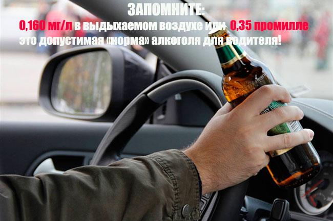 Сколько можно пить за рулем