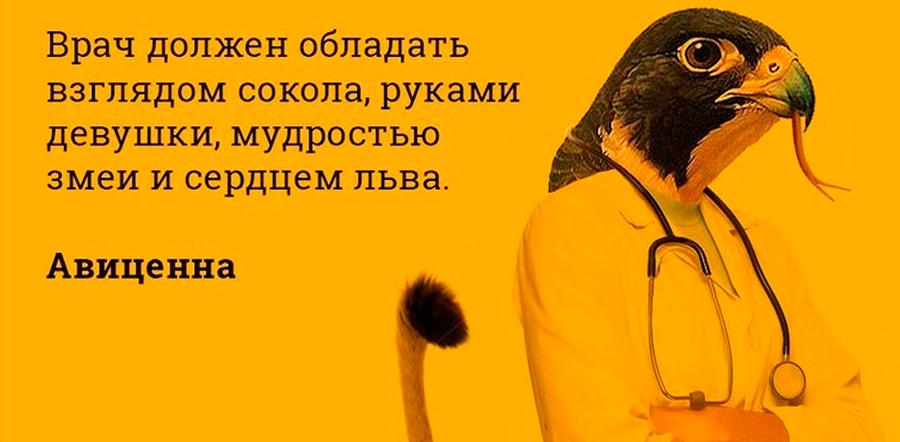 Авиценна о врачах